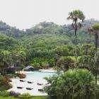Вид из номера отеля Naithonburi Beach Resort
