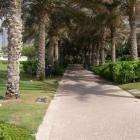 10 волшебных дней в ОАЭ!