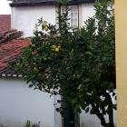 Прекрасная Португалия с Яркими событиями!