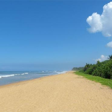 Шри-Ланка, Панадура