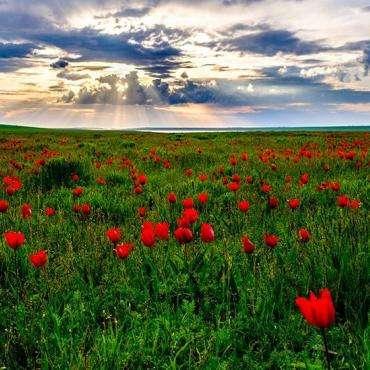 Россия, Калмыкия