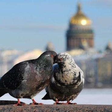 Россия, Новый Иерусалим