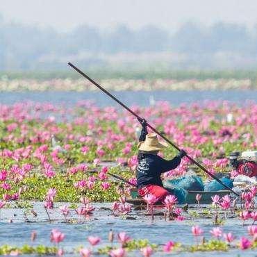 Таиланд, Патайя