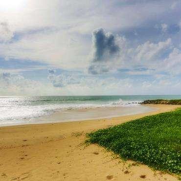 Шри-Ланка, Негомбо