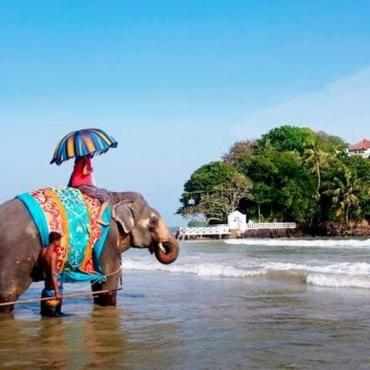 Шри-Ланка, Велигама