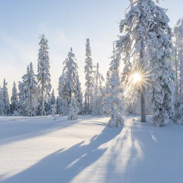 Финляндия, Ювяскюля
